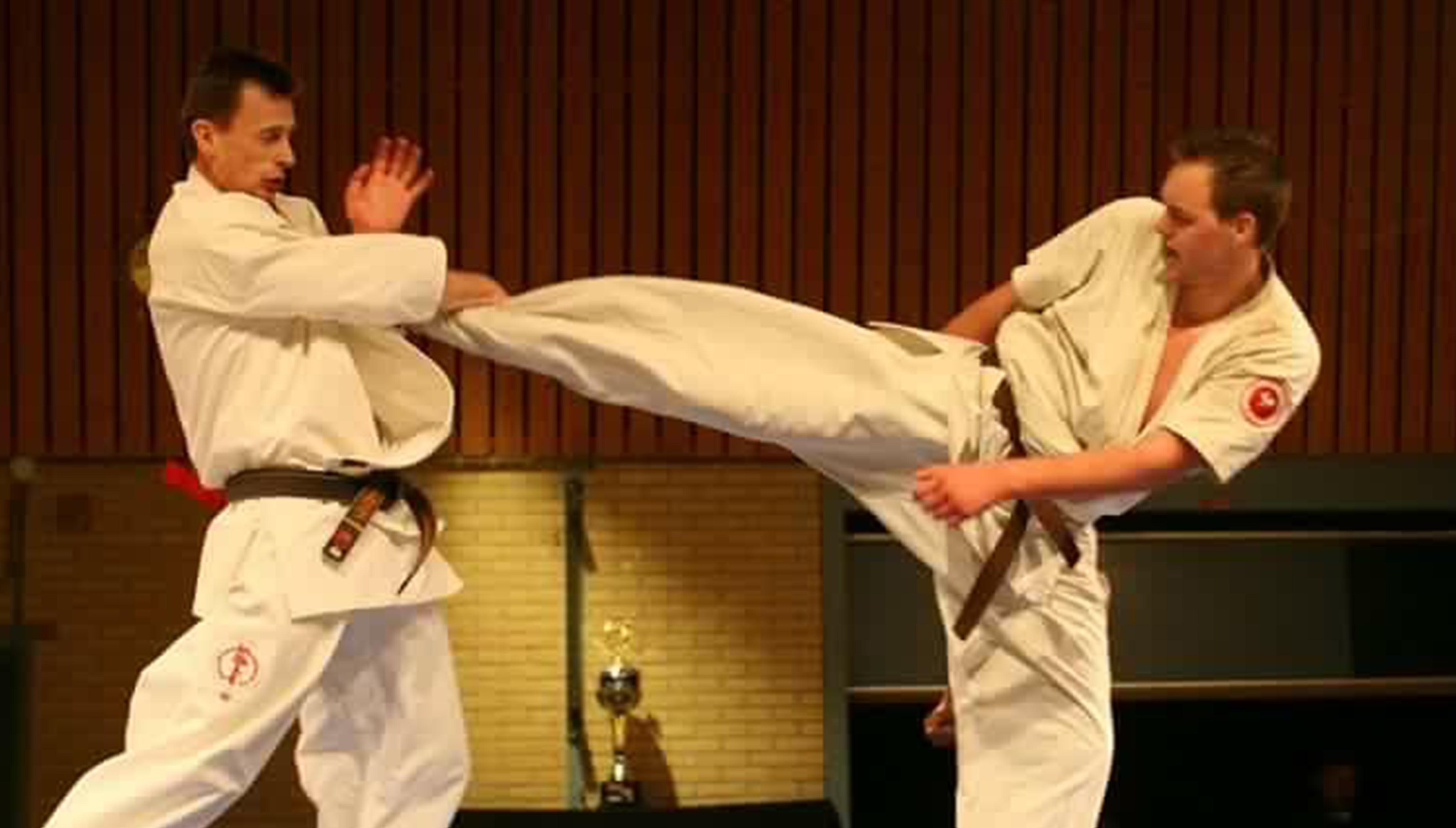 Masters of Kyokushin