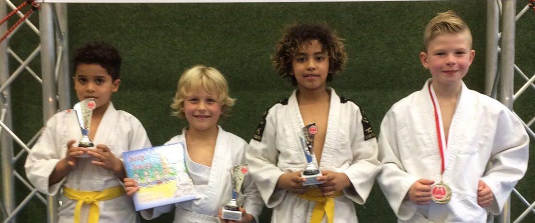 Judoka's in de prijzen!
